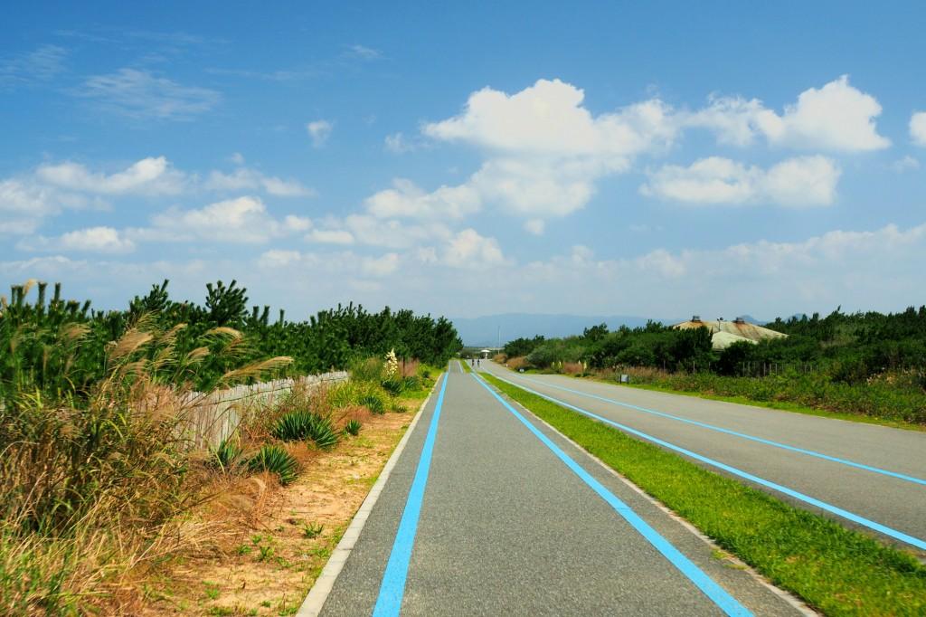海沿いのサイクリングロード