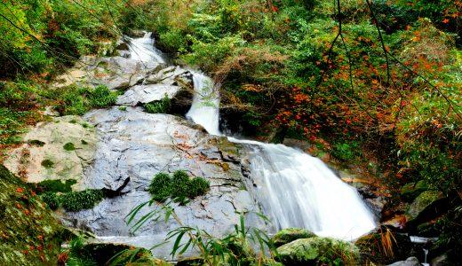 「加茂ゆらりんこ橋」から「明神の滝」まで手軽にプチハイキング!紅葉も!|二丈渓谷