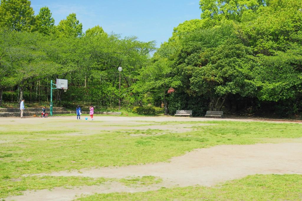 芝生広場でボール遊び