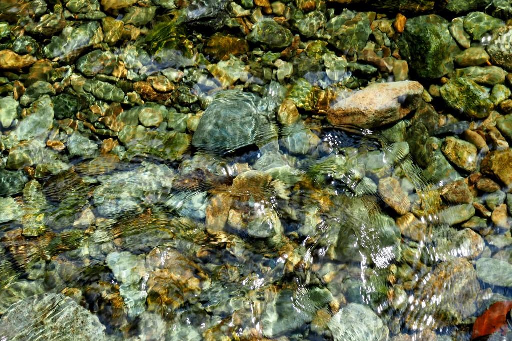 透き通るキレイな水