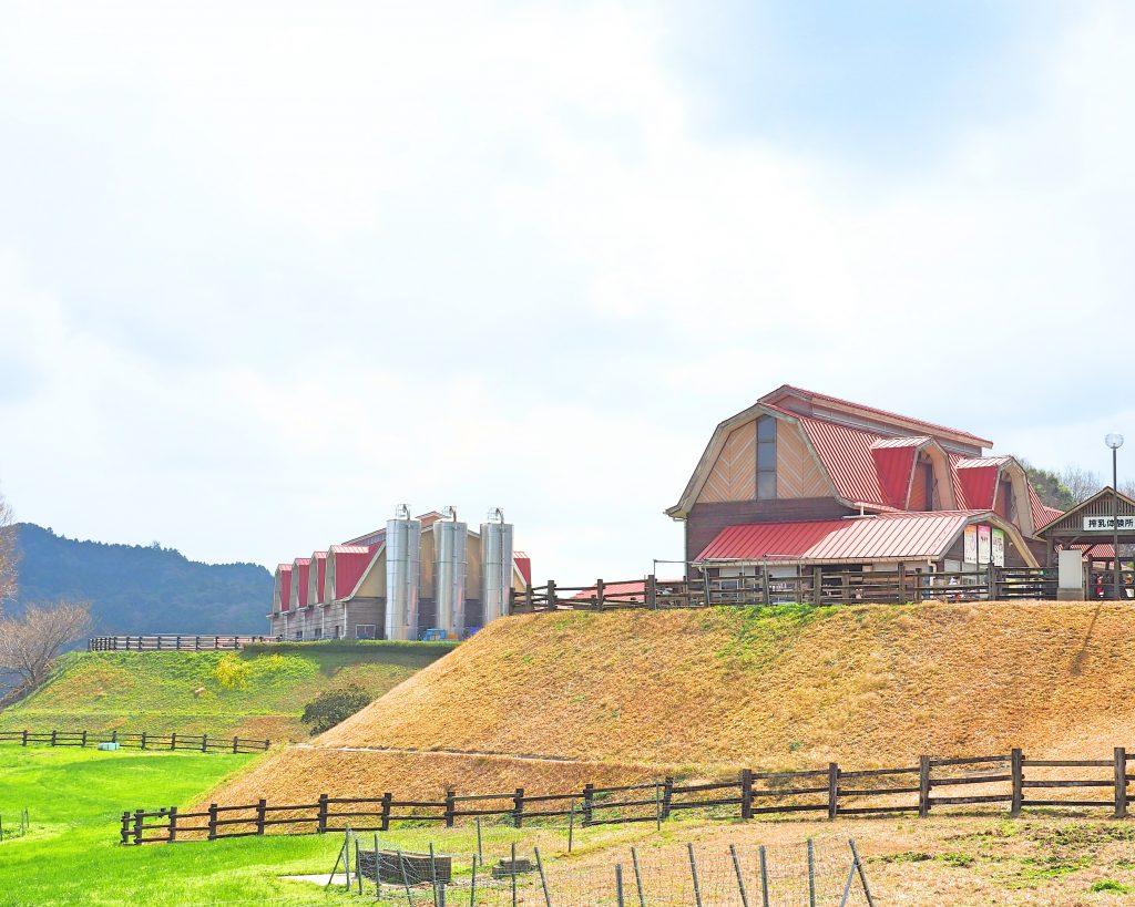 癒される牧場の風景