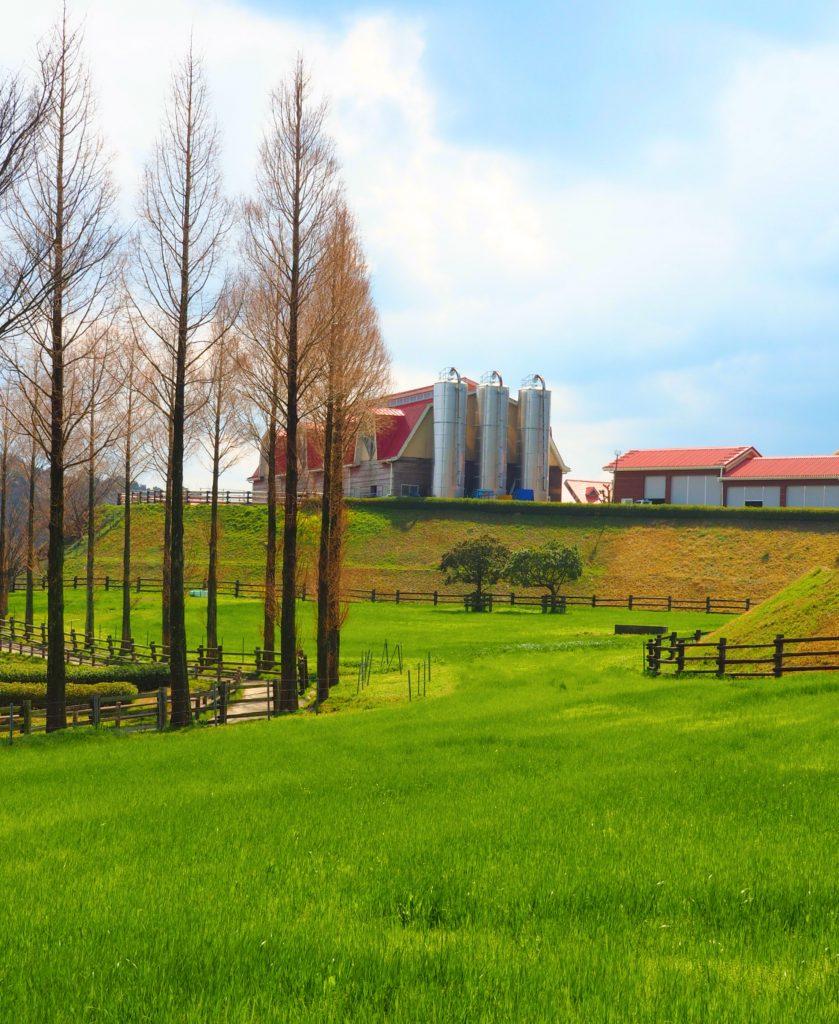 牧場の風景は癒やし効果抜群