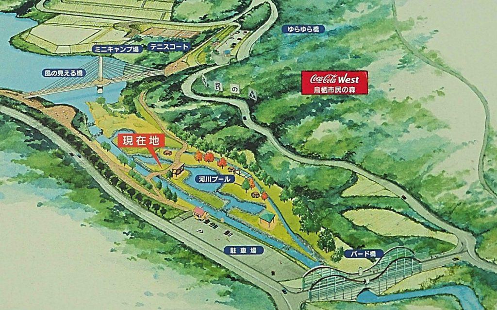 河内河川プールのMAP