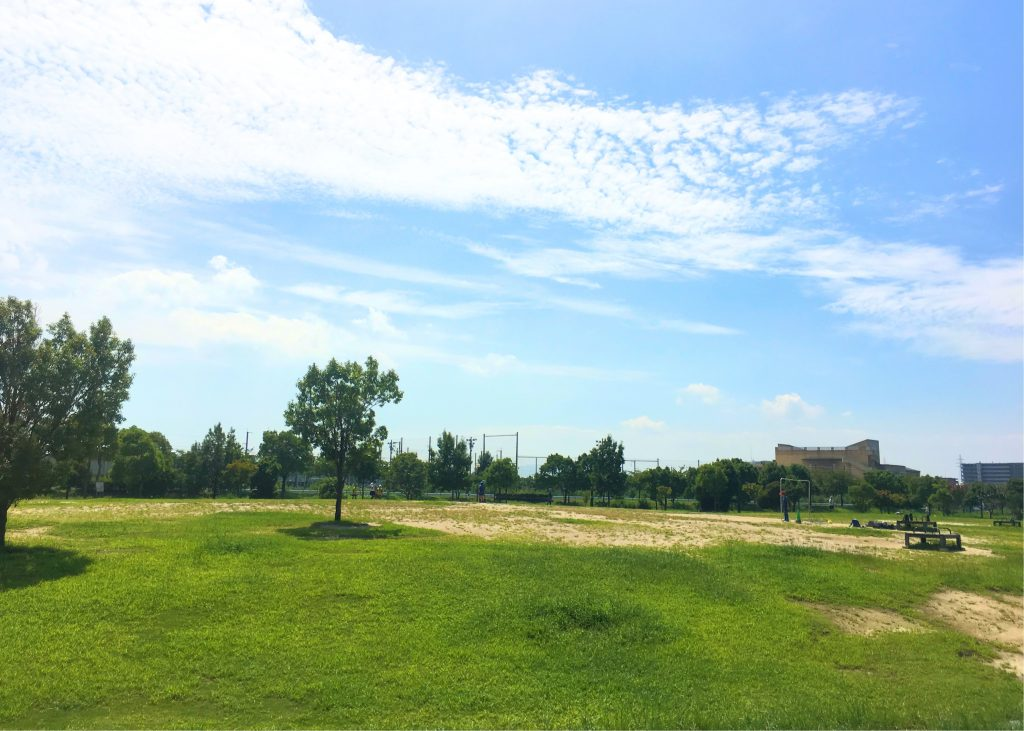 箱崎公園の芝生広場
