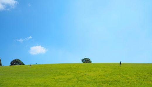 どんぐり村って、こんなに楽しかったっけ? |佐賀県 三瀬ルベール牧場