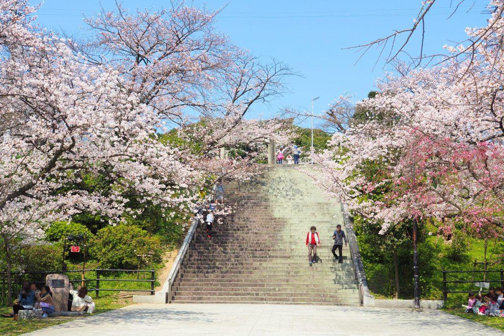 光雲神社前の階段
