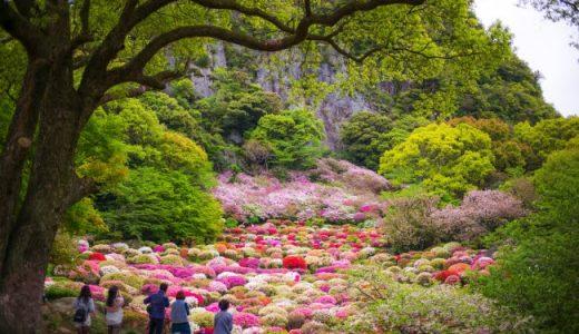 息を呑む絶景! 御船山楽園 20万本のツツジが咲き誇る