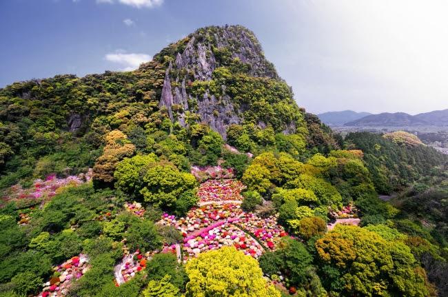 御船山楽園花まつり