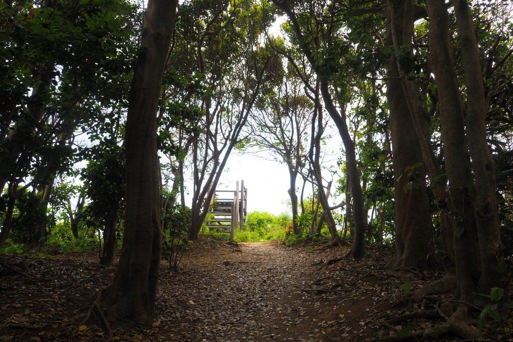 芥屋の大門公園 展望台
