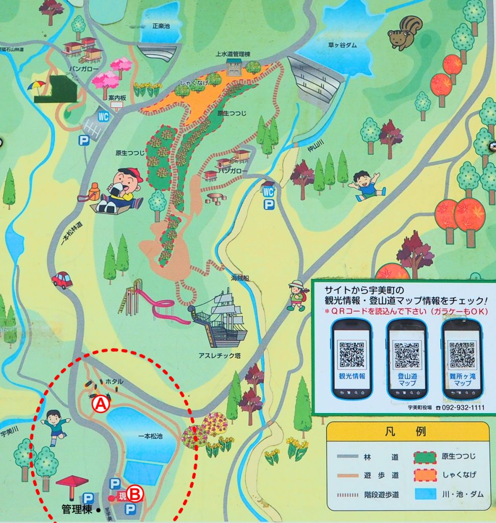 一本松公園MAP