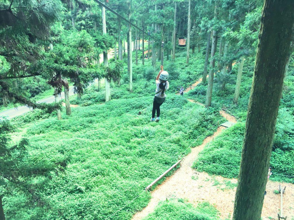 森の中のターザンロープ