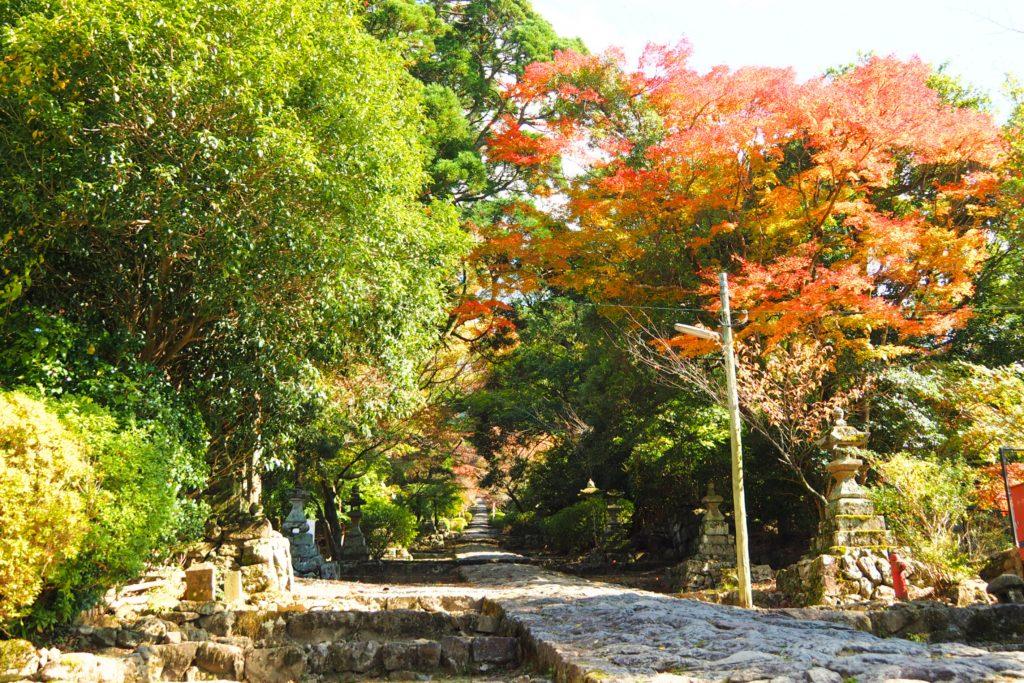 英彦山神宮の参道