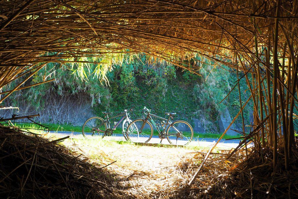 志賀島でサイクリング