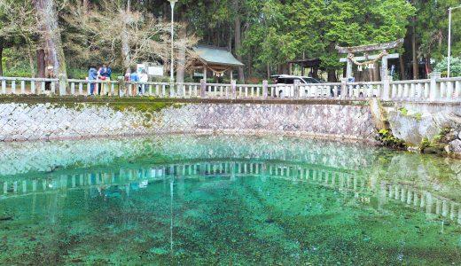 本当に青かった!「別府弁天池」の神秘的な湧き水(山口県)