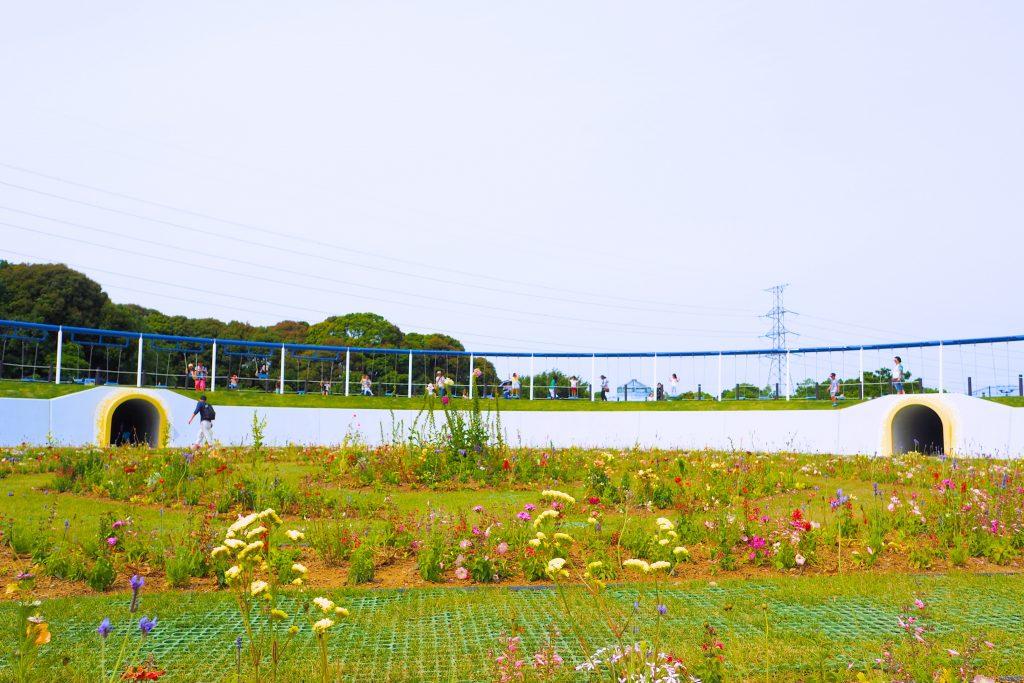 ブランコの中央に植えられた花々