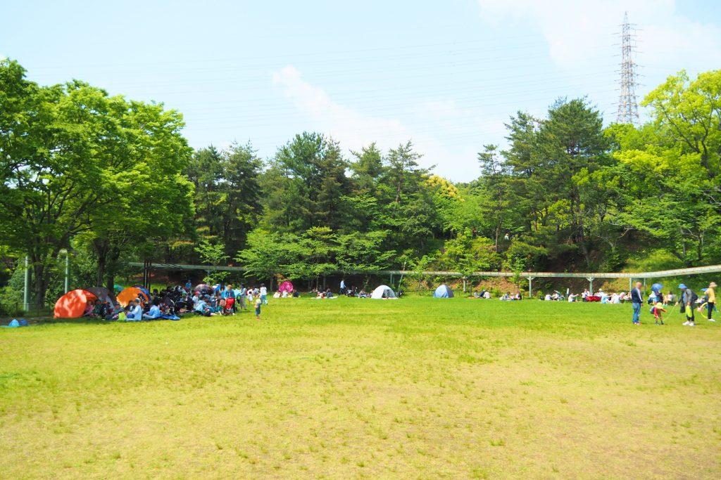 到津の森公園の芝生広場