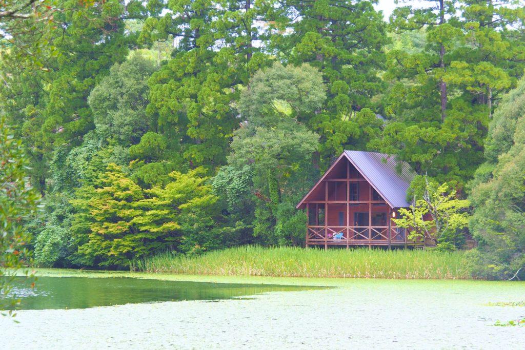 星野村 池の山キャンプ場