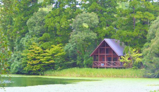 星野村の「池の山キャンプ場」がとにかく最高だった(八女市)